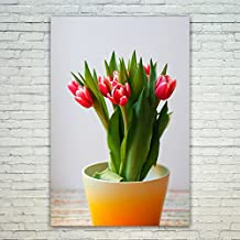 Westlake Art - Poster Print Wall Art - Tulip Flower - Modern Picture Photography Home Decor Office Birthday Gift - Unframed - 12x18in (d72 70c)