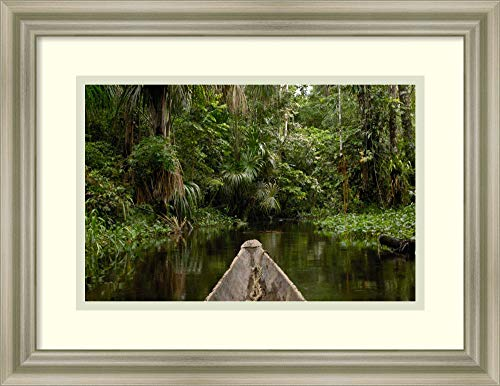 Framed Wall Art Print Dugout Canoe in Blackwater Stream Yasuni National Park Amazonia Ecuador by Pete Oxford 17.75 x 13.75 (Best Wood For Dugout Canoe)