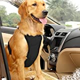 EAST-BIRD Dog Safety Vest Harness with Safety Belt for Most Car, Travel Strap Vest with Car Seat Belt Lead Adjustable Lightweight and Comfortable (L, Black)