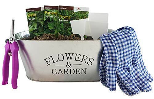 Organic Culinary Herb Growing Starter Indoor Kit with Galvanized Tin Planter Includes: 3 Herb Non-GMO Seeds Starter Packs, Pruners, Gloves, Herb Garden Markers and a Floral Seed Sheet Gift Card