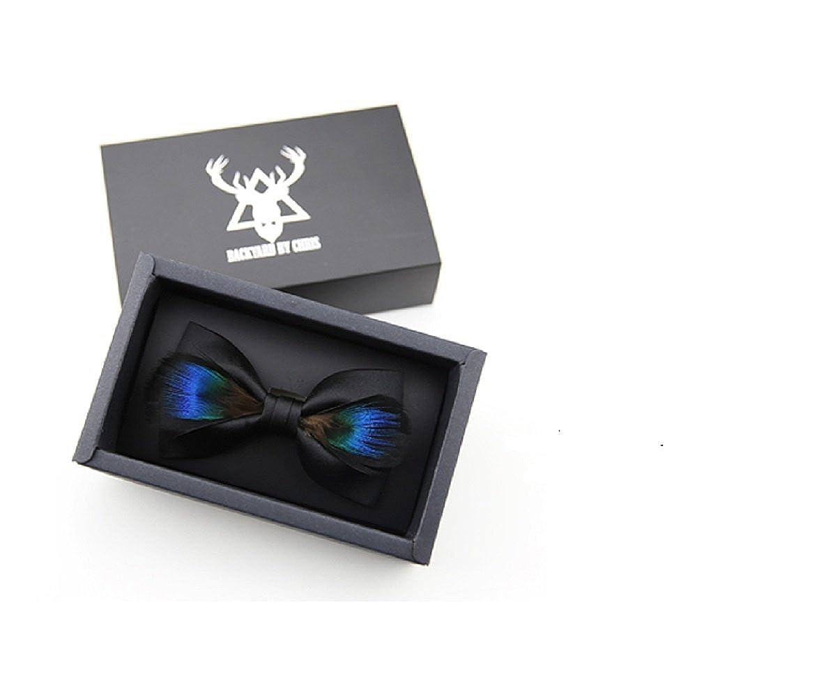 Amytong Men's Luxury Handmade Original Fashion Design Bow Tie