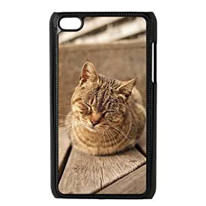 Beautiful Cute Cat Brand New Cover Case with Hard Shell Protection for Iphone 5,5S Case lxa#862810
