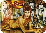 david bowie decal - David Bowie - Diamond Dogs - Album Cover Art - Sticker/Decal