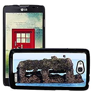 Super Stella Slim PC Hard Case Cover Skin Armor Shell Protection // M00144814 Sea Wreck Stranded Old Birds Ship // LG Optimus L90 D415
