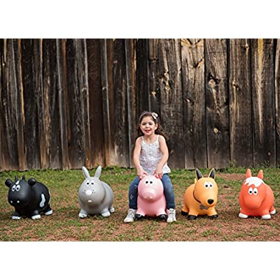 Farm Hoppers Award Winning Inflatable Toddler Safe Bouncing Brown Horse Plus Pump: Toys & Games