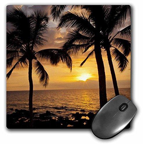 Sunsets Gallery (3dRose USA, Hawaii, Maui, Kihei Palm Tree Sunset, Us12 Bjy0009, Jaynes Gallery Mouse Pad)