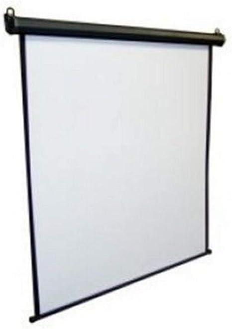 iggual Pantalla Elec. 240x240cm - Pantalla para proyector ...