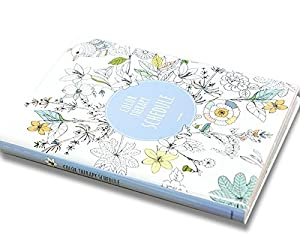 Amazon.com : 'Color Therapy' Coloring Books Monthly Weekly Daily ...