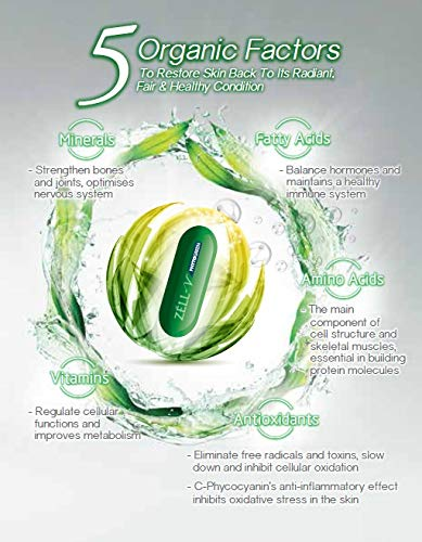 Amazon.com: ZÉLL-V Phytogreen - Cellular Detoxification Fairer and Radiant Skin with Healthier Cells: Health & Personal Care