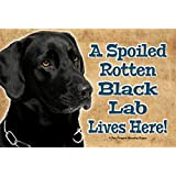 A SPOILED ROTTEN BLACK LAB LIVES HERE! - REALISTIC 9X6 HIGH QUALITY HARDBOARD PET DOG SIGN PLAQUE - THIS NOVELTY PET SIGN SHOULD BE USED INDOORS. OUR NOVELTY PET SIGNS MAKE EXCELLENT GIFTS!