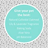Veterinary Formula Solutions Soothing and