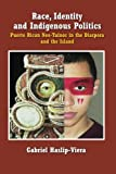 img - for Race, Identity and Indigenous Politics: Puerto Rican Neo-Tainos in the Diaspora and the Island book / textbook / text book