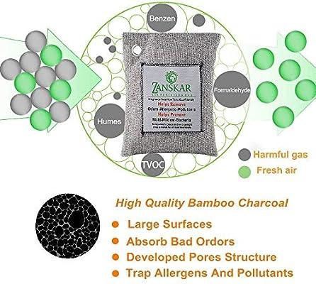 Amazon.com: Nature Fresh bolsa purificadora de aire, bolsas ...