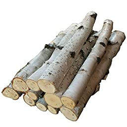 Bundle of Birch Logs