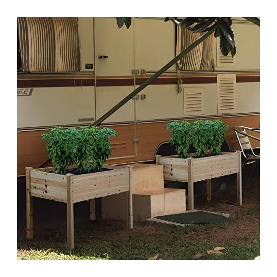 YAHEETECH Wooden Raised/Elevated Garden Bed Planter Box Kit for Vegetable/Flower/Herb Outdoor Gardening Natural Wood, 49 x 23.2 x 30.1in 8 Natural solid wood: This natural raised garden bed is made of non-paint, harmless 100% solid wood, which is known for its strength and dimensional stability as well as its natural resistance with a pleasing wooden smell. It is normal that there are wood knots on the surface. That's a natural phenomenon when the wood is growing. Single piece of side plate: Comparing to other planting beds that have several small pieces of wooden plates at the side, our planting raised bed has a piece of complete side plate at each side of the garden bed. This single-piece design makes the whole structure very stable, and the installation very easy. The side plates are fixed firmly without leakage of soil. Backache-friendly design: Given its 76.5cm/30.1'' height, people with backache/knee pain can easily manage the plants without bending down and taking the risk of pain. The thick solid wood boards are sanded well to prevent any undesired injury caused by wood splinters.