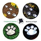Solar Outdoor Animal Paw Design Decorative Lamp