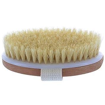 Cepillo Exfoliante Richoose Cepillo De Baño Exfoliante Reduce La Celulitis Y Fortalece El Sistema Linfático Limpia