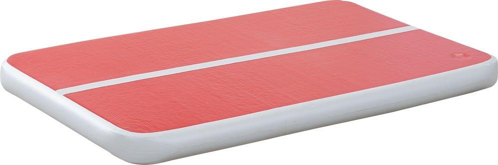 ダンノ(DANNO) 学校体育用品 なわとび練習用 エアーボード 150cm フットポンプ付き D7176
