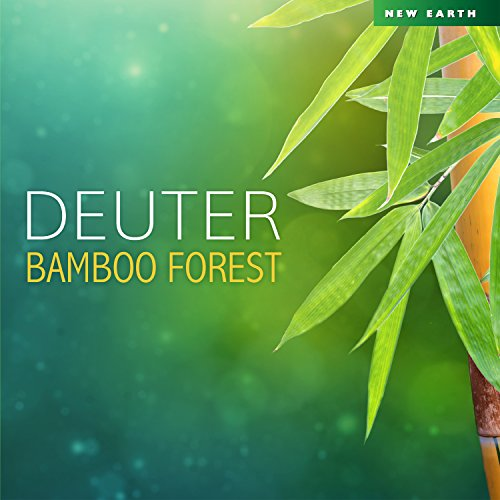 Bamboo Forest - Forest Bamboo