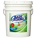 Rainguard 5 Gal Homeowner Clear Multi Surface Masonry & Wood Waterproofer Sealer Protects