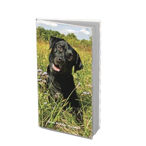 - Labrador Retrievers, Black 2010 Weekly Pocket Planner
