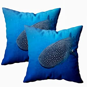 Musesh Comfort Pillow Cover, Pack of 2 Pillow Cases,Seasonal Large Whale Shark Underwater as Feeds Off Mexico Typus Glides Gracefully It Plankton 18X18Inch Decorative Pillowcases for Boys Girls