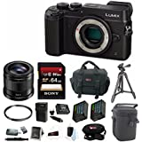 Panasonic DMC-GX8KBODY LUMIX GX8 (DSLM) Camera Body + Panasonic 42.5mm f/1.7 ASPH. POWER O.I.S. Lens and 64GB SD Bundle