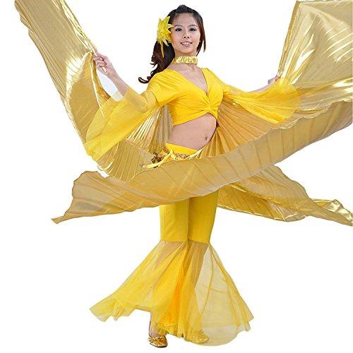 Exotic Dancer Costumes - 8