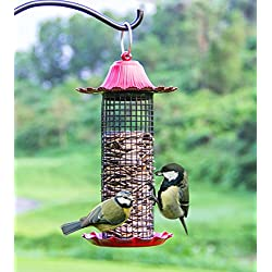 WandLee Parrot Pigeon Panorama Patio Garden Wild Bird Feeder - Large Hole Metal Net - Red