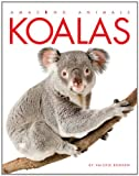 Amazing Animals: Koalas, Valerie Bodden, 0898127467
