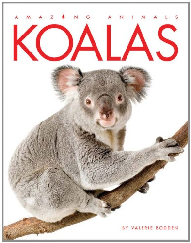 (Amazing Animals: Koalas)