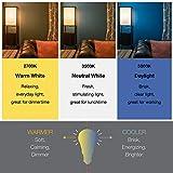 SYLVANIA Home Lighting 10015 Incandescnet