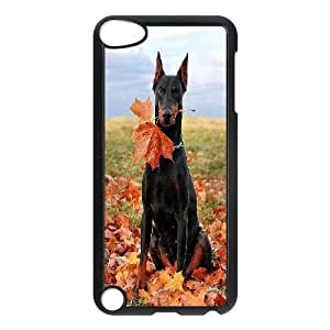 Doberman Design Cheap Custom Hard Case Cover for iPod Touch 5, Doberman iPod Touch 5 Case