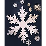 StyroShapes Snow Flakes - 15 per layer - 1'' thick, 150 total per Case