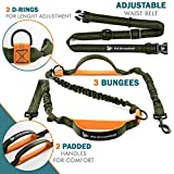 Pet Dreamland Hands Free Dog Leash for Running