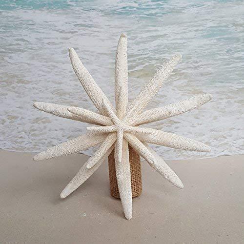 - Starfish Tree Topper - 5-6