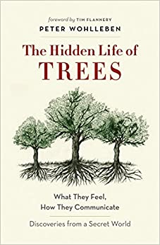 Bittorrent Descargar The Hidden Life Of Trees: What They Feel, How They Communicate Formato Kindle Epub