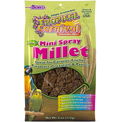 F.M. Browns Tropical Carnival Natural Mini Spray Millet Foraging Treat for Canaries, Finches, Parakeets, Cockatiels, and Parrots, 4-oz Bag - USA Grown and Harvested