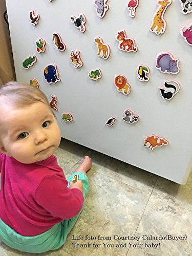 Price comparison product image Refrigerator magnets for kids ZOO animals - 29 Foam magnets for toddler - Fridge magnets for children - Animal baby toys - Developmental toys - Educational toys - Magnetic toys for toddlers