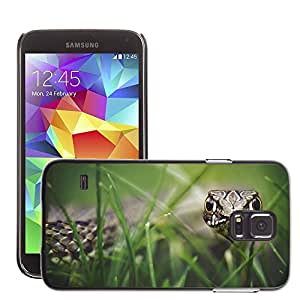 Hot Style Cell Phone PC Hard Case Cover // M00047256 animals reptiles frogs from snake the // Samsung Galaxy S5 i9600