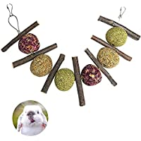 Barley Ears Bunny Chew Toys to Improve Dental Health, Pet Teeth Snacks Toys with 100% Natural Organic Apple Sticks and…