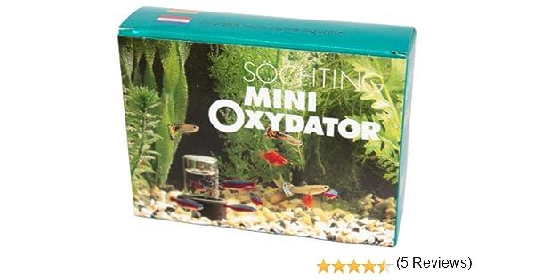 Söchting Oxydatoren - Oxidador mini para acuario pequeño: Amazon.es: Productos para mascotas