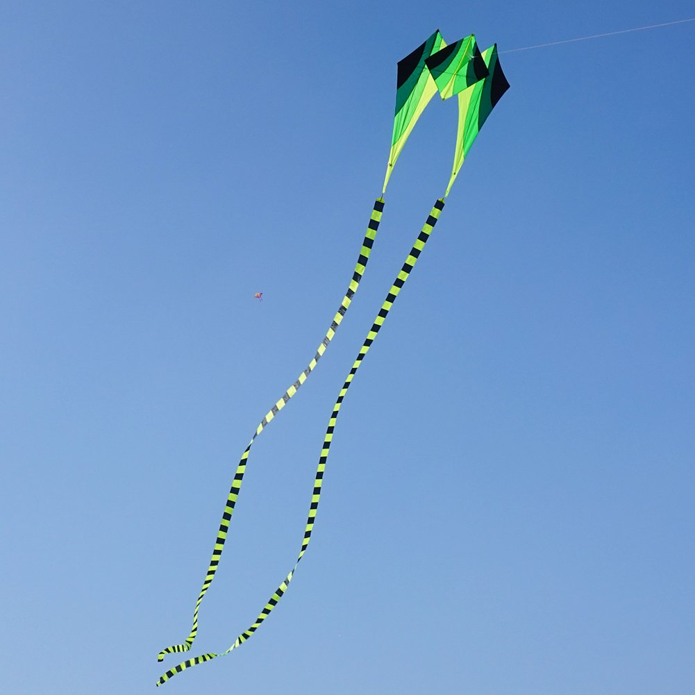 Besra Large Single Line 3D Diamond Flowing Frog Kite with 2 Long Tails Outdoor Fun Sports for Kids & Adults (Green)