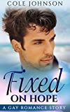 Fixed on Hope: Straight to Gay MM Romance