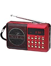 Portable FM radio, stereo sound, strong pure signal, tuned into a flash, a memory, and a speaker