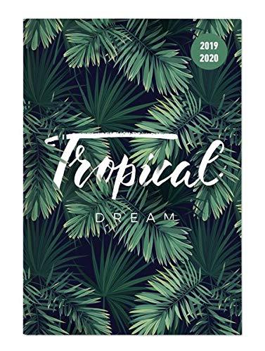 """Diario agenda scuola collegetimer /""""Jungle/"""" 2019//2020 352 pagine Giornaliera 10x15 cm"""