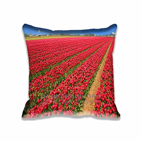Eddie Designs Popular Band Decorative Tulip Field Throw Pillow Covers - Cotton Zippered Seasons Cushion Case for Couch - Cotton Throw Field