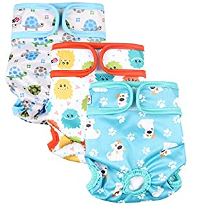 Wegreeco Luxury Washable Reusable Dog Diapers(New Pattern) - Durable Female Dog Diapers, Stylish Doggie Diapers, 3 PACK(Inspiring, Medium)