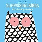 Surprising Birds: Lift-the-Flap Colours (Walker Studio)