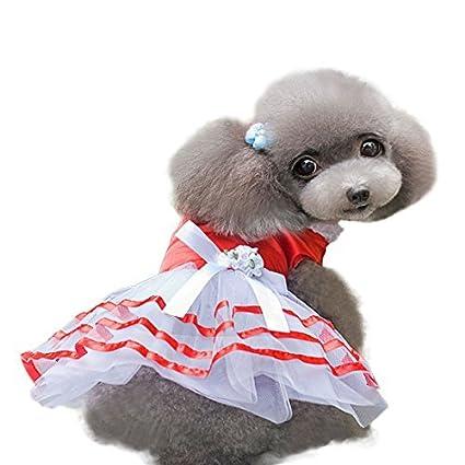Amazon.com : eDealMax Traje de ropa de la Falda de perrito ...